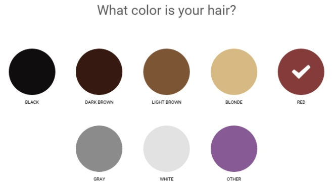 ipsy quiz 03 - hair color