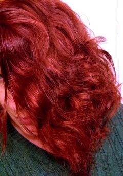 hask hair half oiled