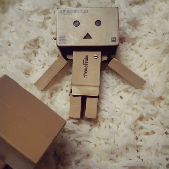 Year of the Danbo